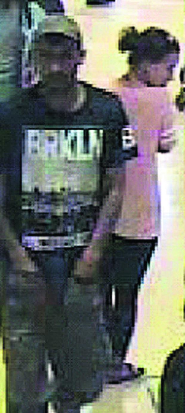 This Is Wiltshire: Wiltshire Police issued this CCTV picture of the pair they want t
