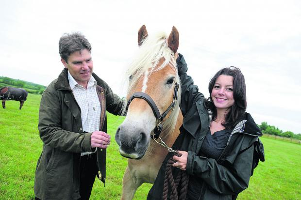 This Is Wiltshire: Rein and Shine owners John McDonald and Jo Sharpe with Attie