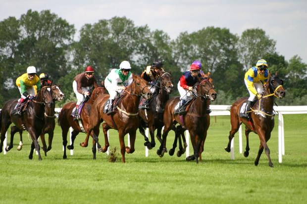 This Is Wiltshire: RACING: Dream preparation for Lambourn's Osborne