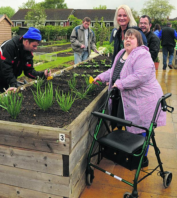 This Is Wiltshire: Pauline Joad, right, with carer Emma Smith and Scott Aylesbury at work on the raised bed. Picture: Trevor Porter (48728)
