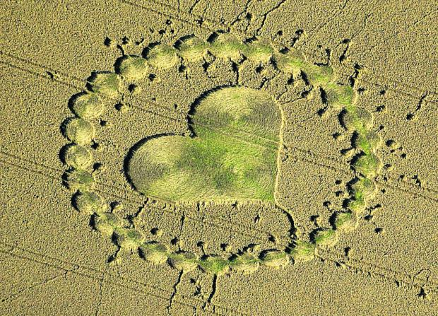 This Is Wiltshire: An intricate pattern in a field near Calne in August 2000