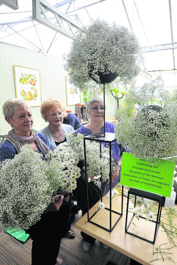 This Is Wiltshire: Nancy Newman, Rosalyn Clarke and Christine Oughton of the Melksham & District Flower Arrangement Society with their Emerald anniversary display  (49369-1)