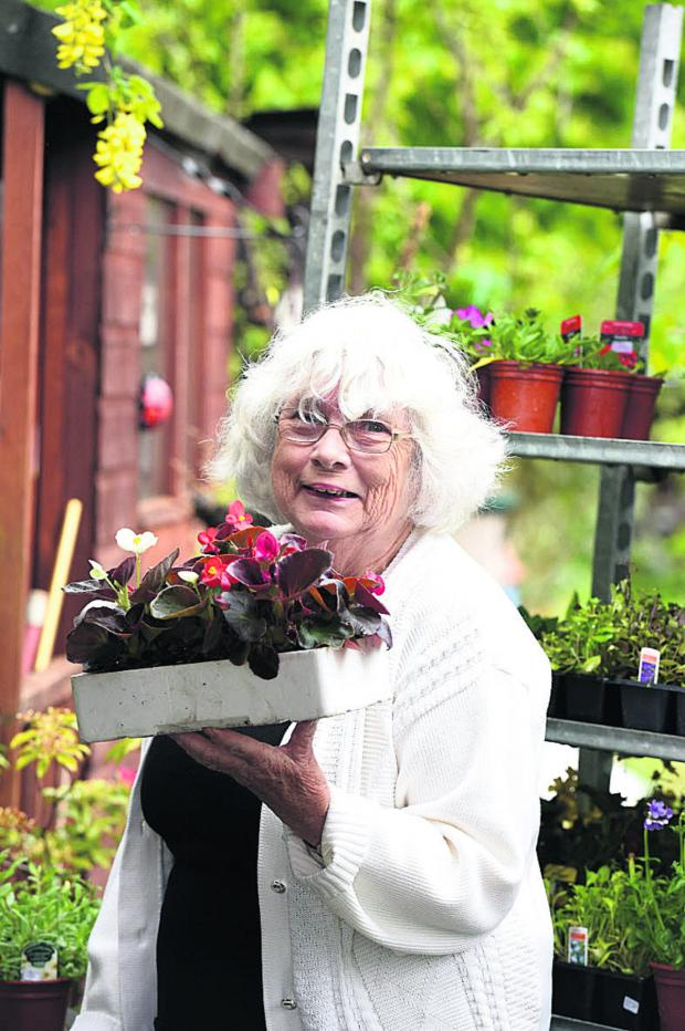 This Is Wiltshire: Charity stalwart Margaret Spackman held her last ever plant sale at the weekend