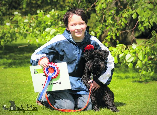 This Is Wiltshire: Ten-year-old Campbell Hanley from Royal Wootton Basset, along with his Schnauzer Radley, scooped Best in Show in his first ever dog show