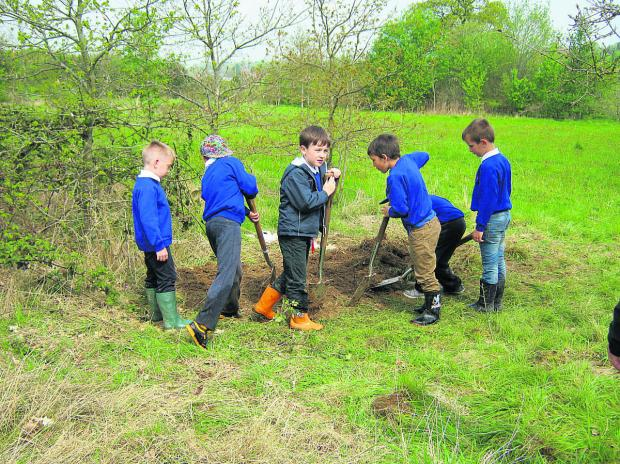 This Is Wiltshire: Hard at work, the children at Southwick Country Park