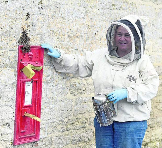This Is Wiltshire: Beekeeper Fee Robinson came to the rescue when a Royal Mail maintenance man spotted bees flying in and out of a postbox in Lyneham this morning