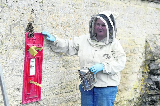 This Is Wiltshire: Fee Robinson, a bee farmer from Wiltshire Bee Centre, moving the bees that took up residence in a post box in Lynenham