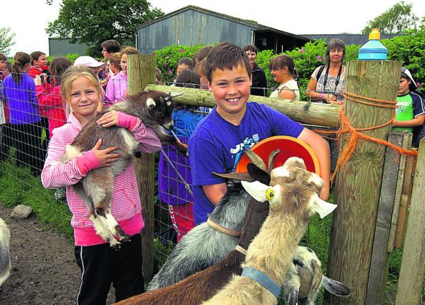 This Is Wiltshire: Megan and Ryan enjoy meeting goats at Rowdefield Farm, Rowde