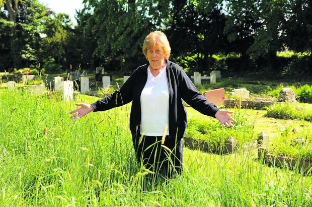 This Is Wiltshire: Mary Holloway, who has relatives buried in Trowbridge Cemetery, is unhappy with the unkempt grass       Photo: Trevor Porter