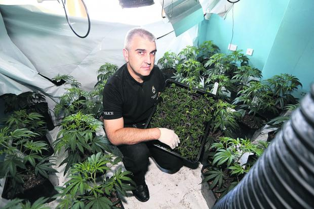 This Is Wiltshire: PC Gareth Kitchener at the drugs factory uncovered in Gorse Hill