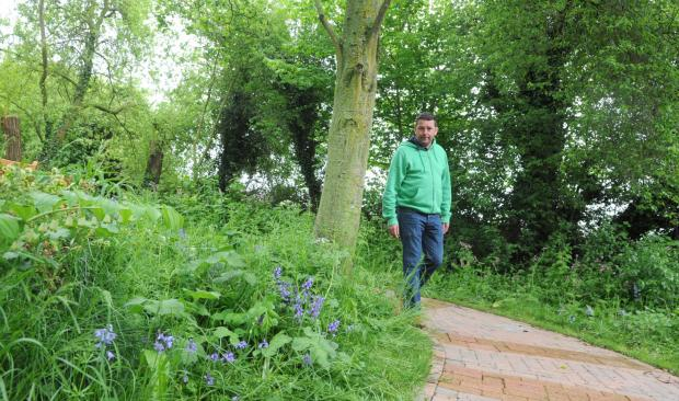 This Is Wiltshire: Bluebell Walk