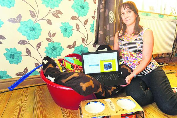 This Is Wiltshire: Julie-Anne Morrisey with the bed she had ready for her new dog, displays the site on which she was conned