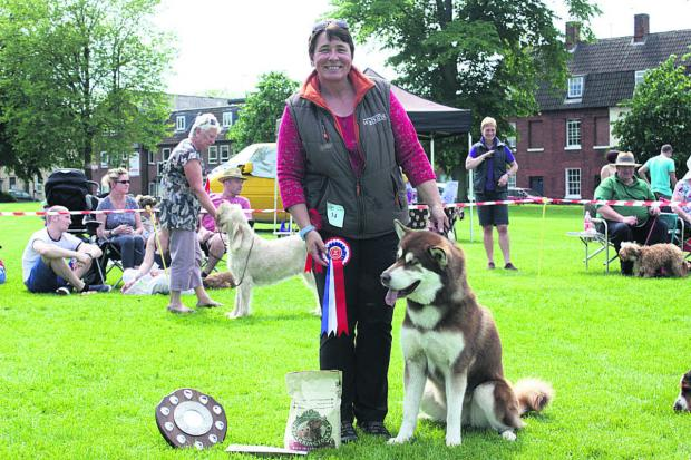 This Is Wiltshire: Best in show pedigree, won by Corinna Clarke of Chippenham and her Alaskan Malabute Denalt