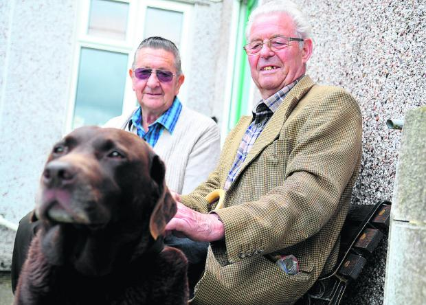 This Is Wiltshire: Gary and Donald Embling, who have type 2 diabetes, with their dog Hartley