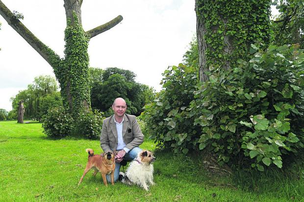 This Is Wiltshire: Marc Allum by the trees which were pollarded with Maisie and Coco