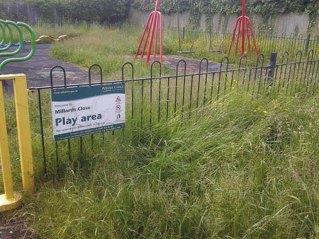 This Is Wiltshire: Uncut grass at the Millards Close play area