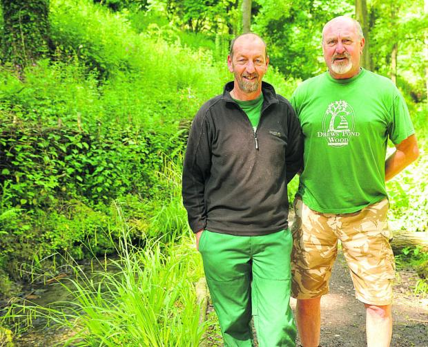 This Is Wiltshire: Stuart Hislop, leader of the Drews Pond Wood Project, and John Bate