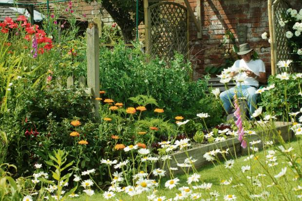 This Is Wiltshire: Melksham gardens tours to help charity