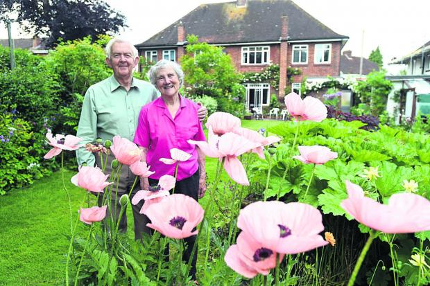 This Is Wiltshire: rancis and Jill Chadwick are opening their garden to raise funds for a school in Uganda