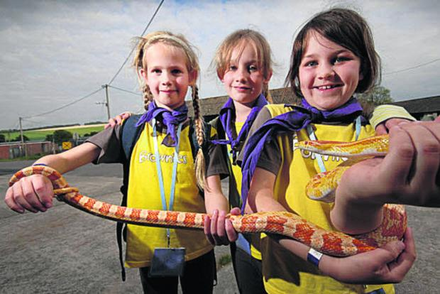 This Is Wiltshire: 1st Worton & Marston Brownies Helen, Millie an