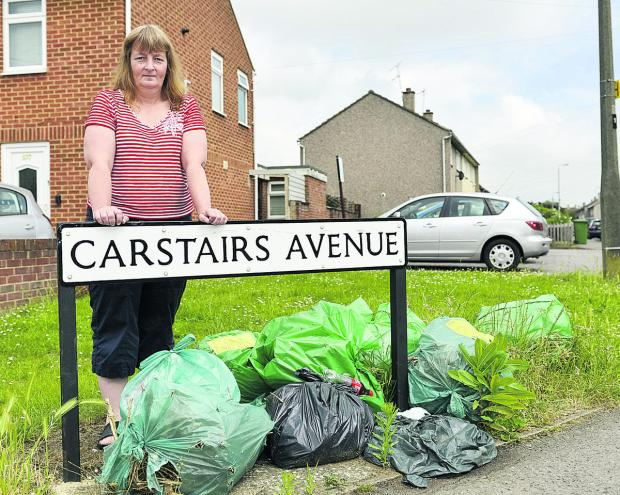 This Is Wiltshire: Coun Fay Howard, who is opposed the council's decison not to clear fly-tipped green waste immediately