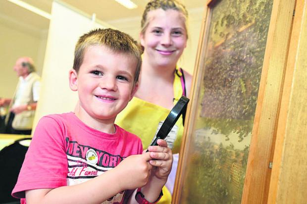 This Is Wiltshire: Jacob Halton with Chloe Veitch of Wiltshire Bee Centre