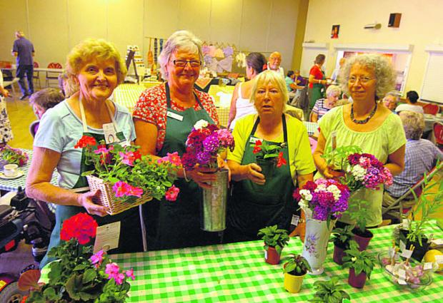This Is Wiltshire: Shirley Long, Viv Olson, Annette Jefferies and Cheryl Underhill                sell plants in the Bouverie Hall market                  (pm1321) By paul morris