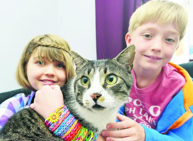 This Is Wiltshire: Hope and Charlie with Bob the cat