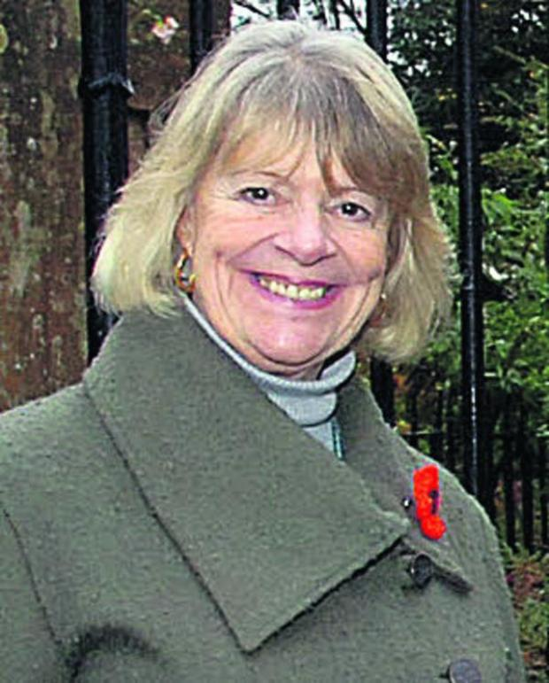 This Is Wiltshire: Councillor Sue Evans