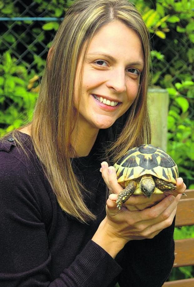 This Is Wiltshire: Sian Rawlinson with Theodore the tortoise. Theodore went missing and was found thanks to a Facebook appeal. Pic