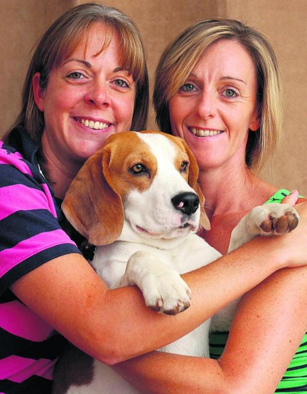 This Is Wiltshire: Conker is reunited with owners Jane Amos-Richards and Charlotte Amos