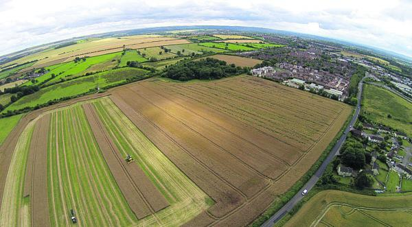 This Is Wiltshire: the Lay Wood site, on the boundary of Devizes and Bishops Cannings, where 230-homes are to be built. Picture by Graham Risdon www.mediainventions.com