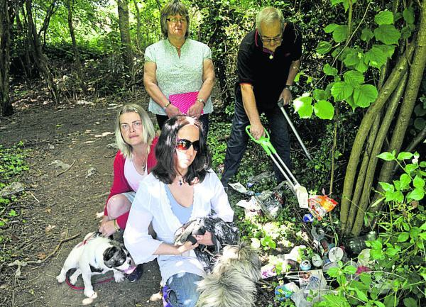 This Is Wiltshire: Marlborough group to fight litter blight