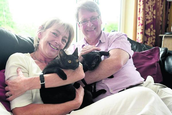 This Is Wiltshire: Jane and Philip Mackie with adopted kittens Shardey and Ozy, found outside a pet shop