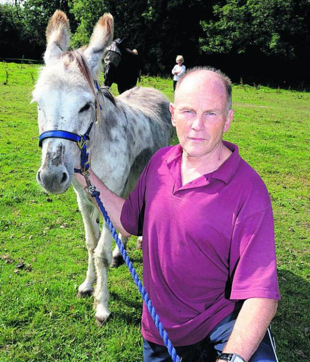 This Is Wiltshire: Philip Parish with Hector the donkey, the victim of an attack on Saturday night