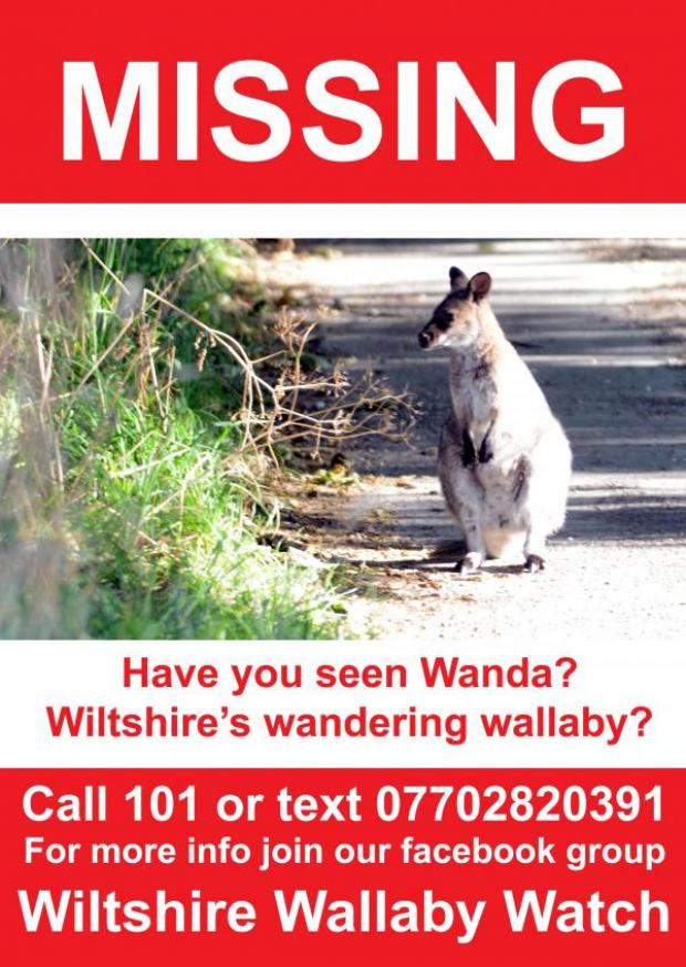 This Is Wiltshire: Missing posters were being put up today after a new sighting in Ramsbury