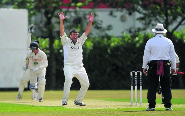 This Is Wiltshire: Adam Tucker appeals for a wicket