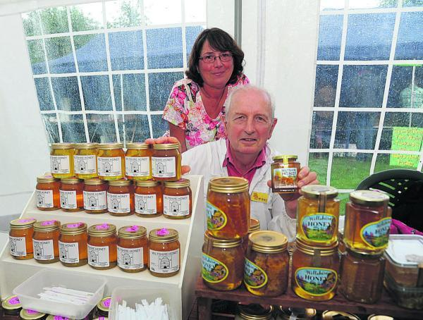 This Is Wiltshire: Lacock bee and honey day