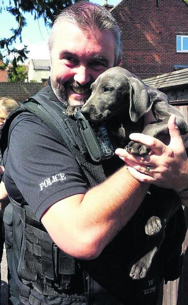 This Is Wiltshire: PC Mark Wallace with one of nine puppies rescued by police after they ran into the road at Seend. Picture: @WiltsPolFedJBB/PA Wire