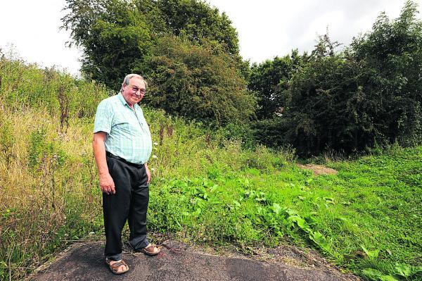 This Is Wiltshire: Chippenham cycle path bramble to come down