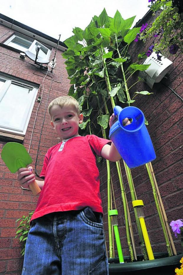 This Is Wiltshire: Young Trowbridge gardener is walking tall