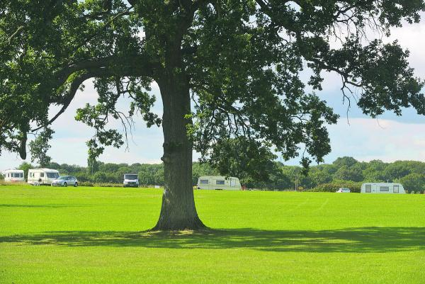 This Is Wiltshire: Travellers set up camp at Lydiard Park