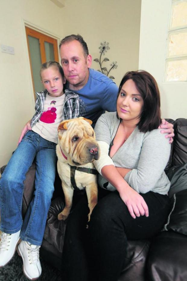 This Is Wiltshire: The Mills family with their dog which was attacked by a Staffordshire bull terrier over the weekend.