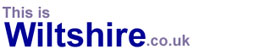 This Is Wiltshire: Site Logo