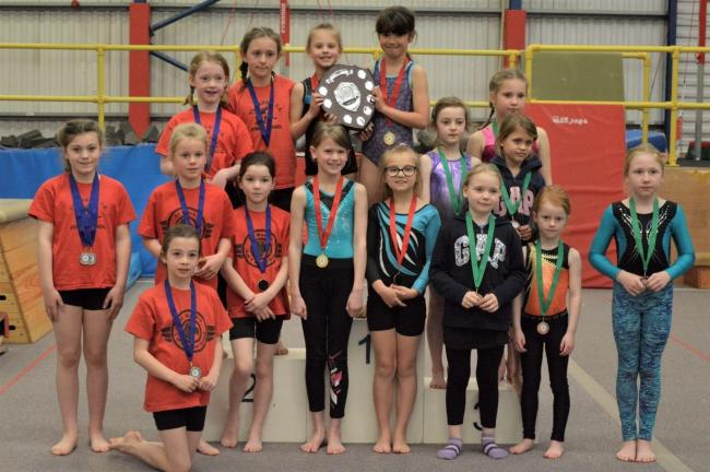 The Mead were crowned primary gymnastics champions in the Wiltshire School Games